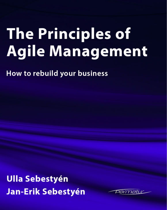 The Principles of Agile Management